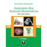 Anatomia-Dos-Animais-Domesticos---Artmed
