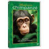 DVD-Chimpanze---Disney-Nature