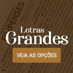 Bíblia Evangélica Letras Grandes
